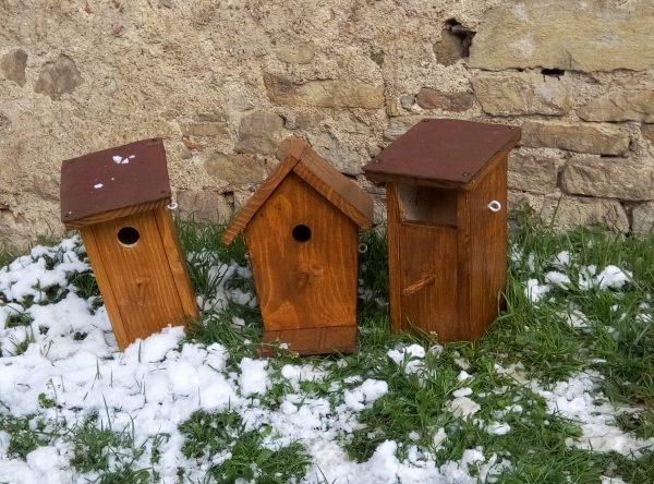 cmj cabane oiseaux 2018 (7)