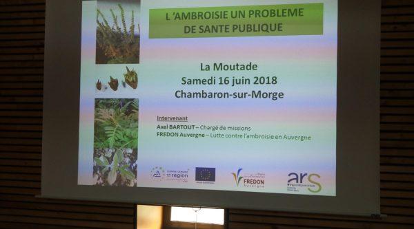 ambroisie 2018 (3)